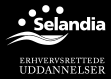 selandia-logo-small